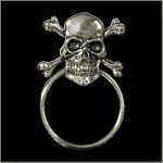 Skull n Crossbones Sunglass Holder Pin